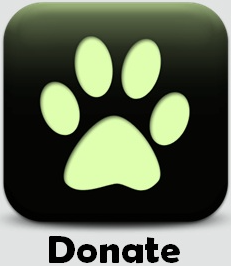 Donate to All Things Canid